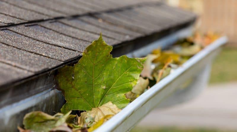 gouttière sur toit