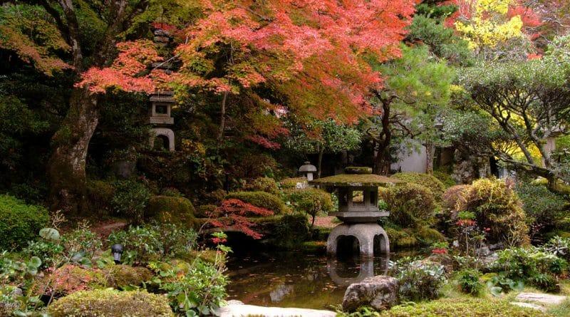 jardin du japon