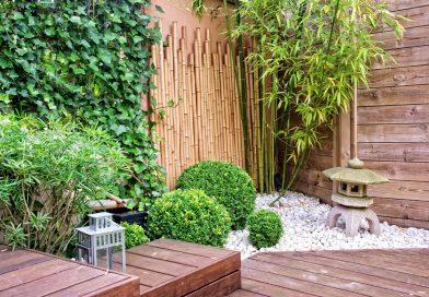 Comment créer un joli petit espace vert chez vous ?
